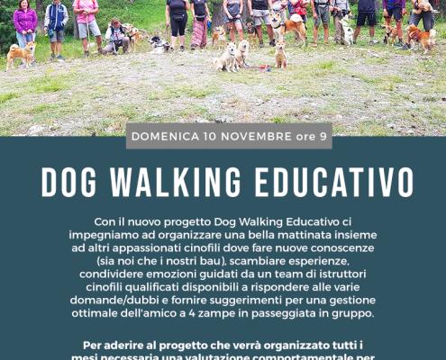 Dog walking 10 novembre